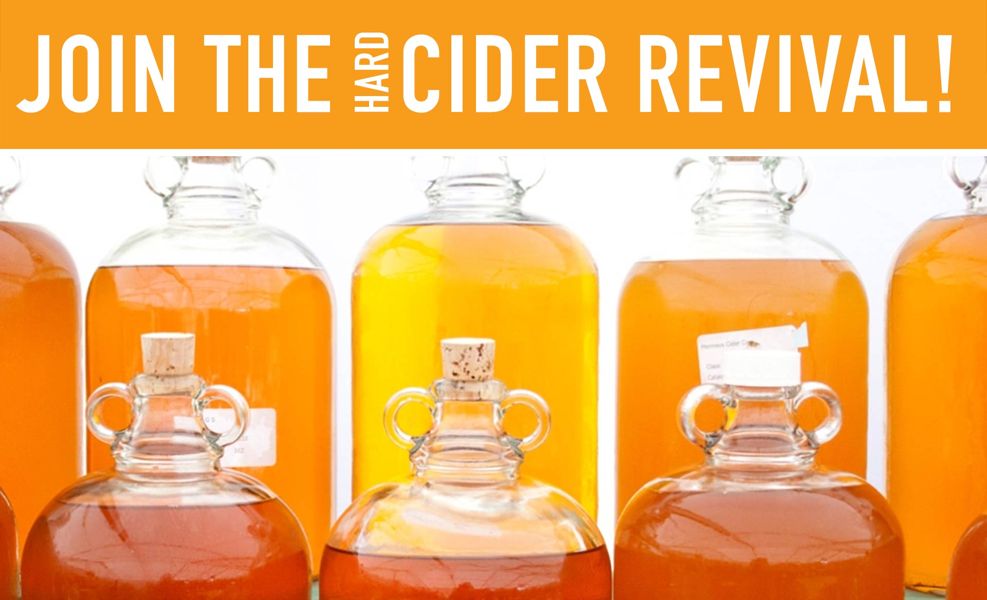 Join the Hard Cider Revival