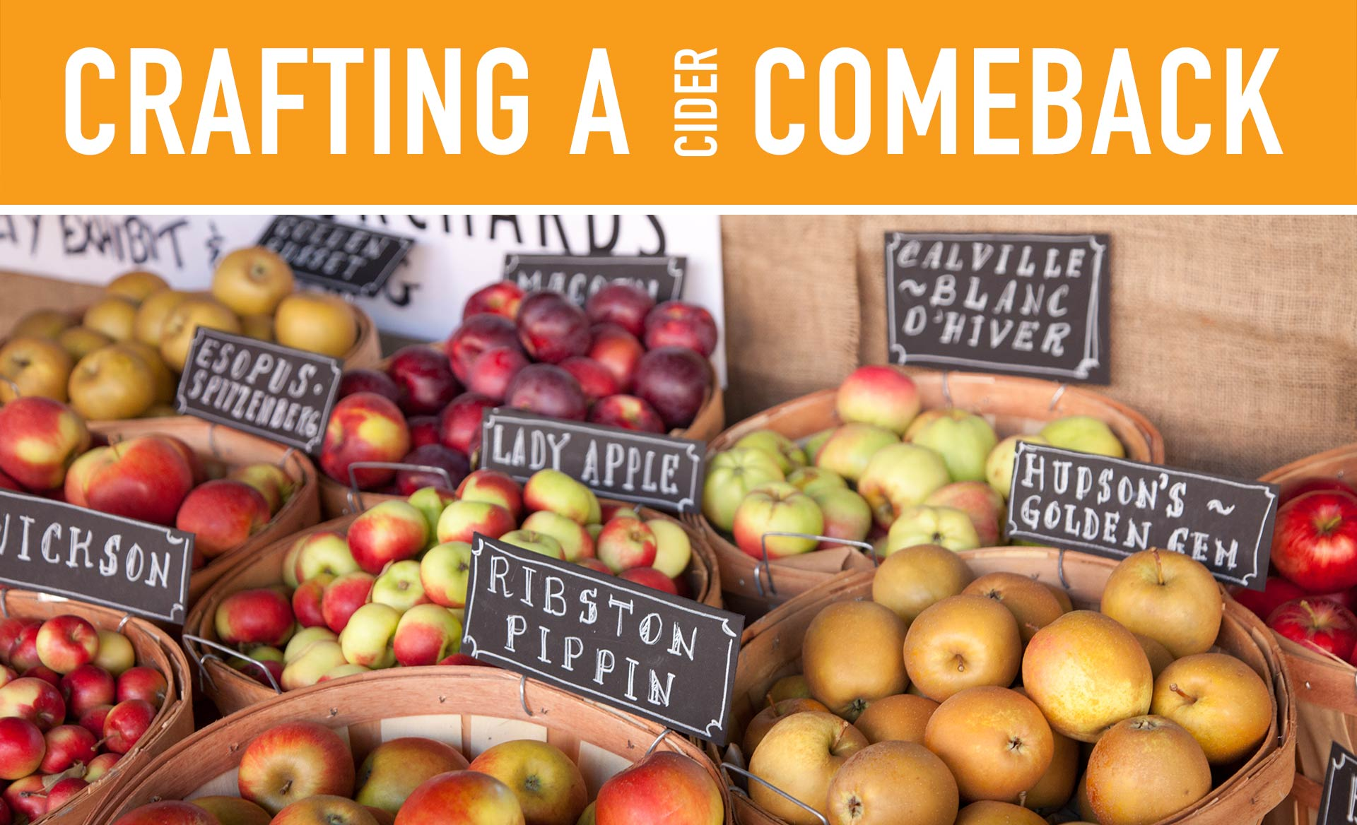 Crafting a Cider Comeback